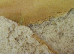 Bear_paw_bread